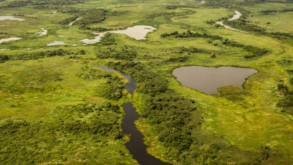 Pantanal & Jaguars